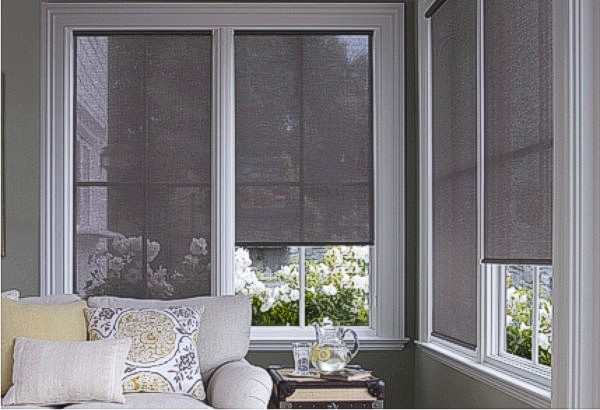 Decorating Sun Blocking Window Shades Inspiring Photos Gallery Of Doors And Windows Decorating